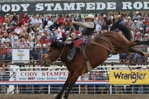 Buffalo Bill Cody Stampede Rodeo : One of nine stops on the Million Dollar Gold Tour Series insuring the top cowboys from across the continent will be competing. Experience one of the best rodeos in the world!