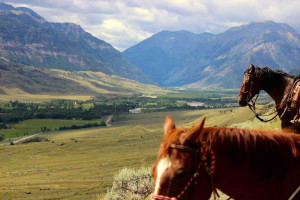 Double Diamond X Ranch: Cabins and Horseback Rides :: Stay and play in an absolutely beautiful setting, near Cody. Beautiful cabins and horseback riding.