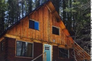 Wildman Adventures - Alpine WY Mountain Get Away! :: Located at the head of the Bridger National Forest entrance, just 30 minutes from Jackson. Horse Lovers, Snowmobilers, & Anglers Paradise! 3 bedroom, 1 bath, sleeps 10.