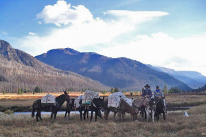 Bliss Creek Outfitters - Yellowstone Pack Trips