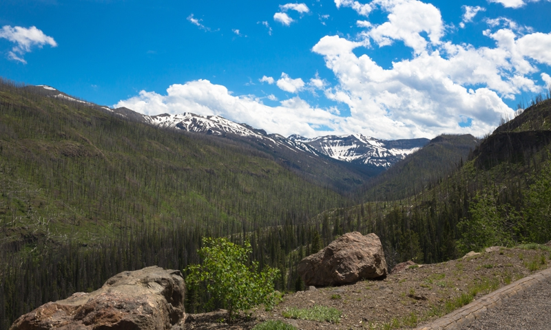 East Yellowstone WY