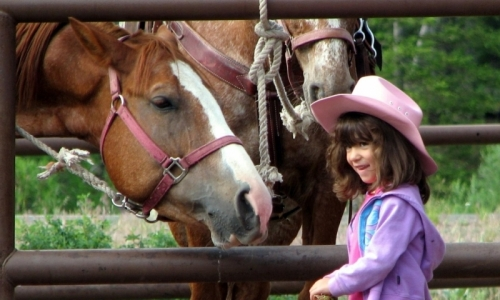 Things To Do In Cody Wyoming With Kids Alltrips