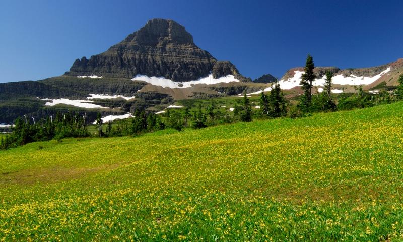 Glacier National Park Montana Garden Wall