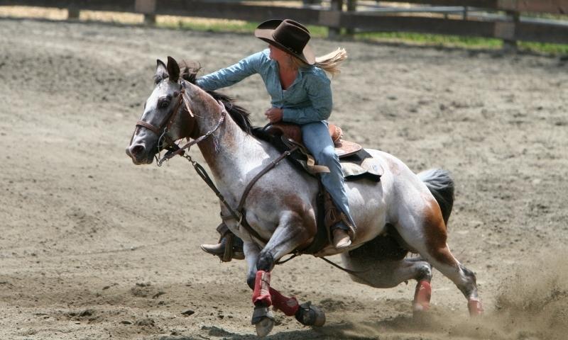Cody WY Rodeo