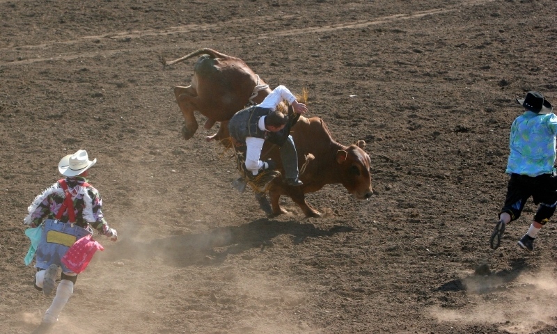 Cody Wyoming Night Rodeo Alltrips