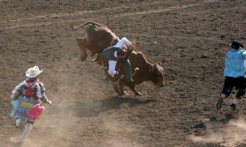 Cody Wyoming Nite Rodeo