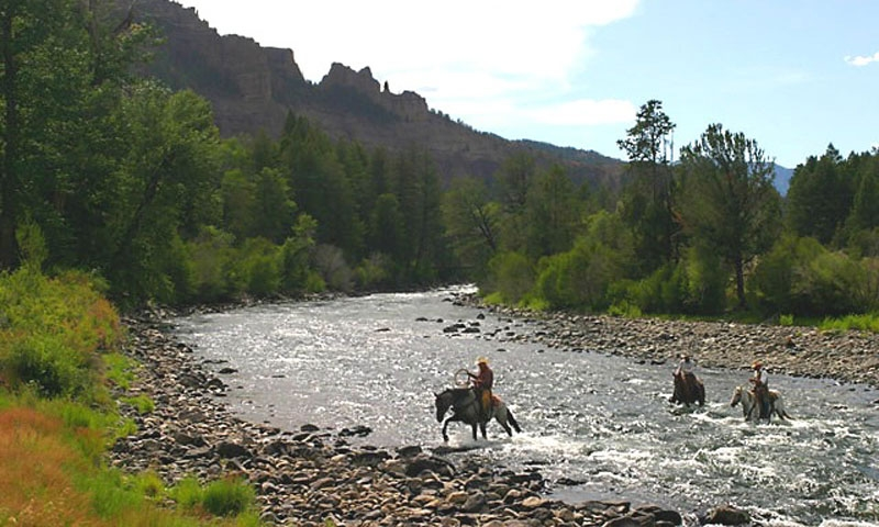 Shoshone National Forest North Fork Shoshone River Horseback Riding Cody Wyoming